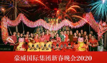 醒狮醒龙庆新年 pic